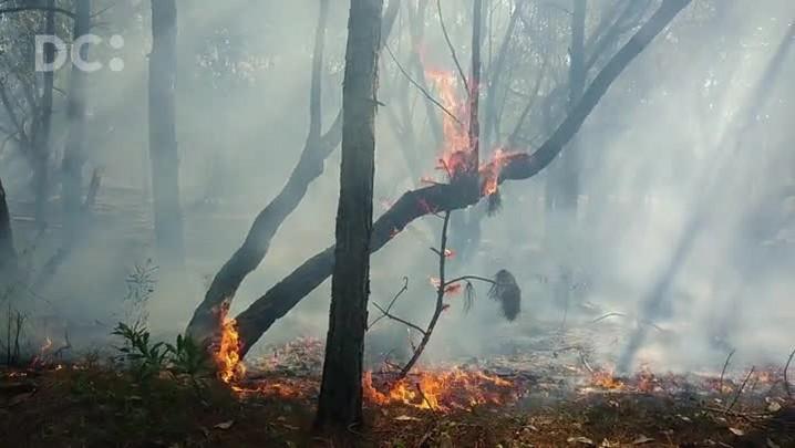 Incêndio atinge Praia do Moçambique