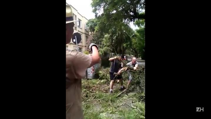 Moradores da rua São Manoel iniciam retirada das árvores