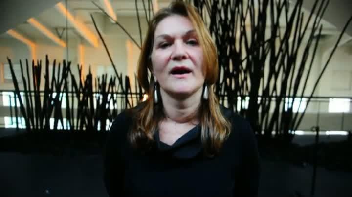 Selir Straliotto fala sobre obra danificada na Usina do Gasômetro