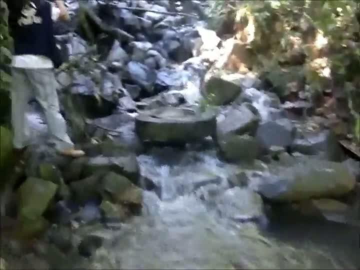 Caminhão tomba na Serra Dona Francisca
