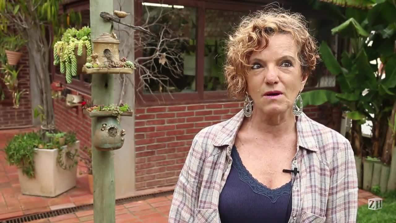 Novidades no jardim: ceramista desenvolve elaboradas casas para passarinhos