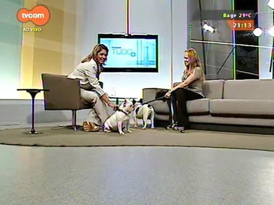 TVCOM Tudo Mais - \'Tudo+Pet\': Saiba quais os cuidados na hora de cruzar cães e gatos