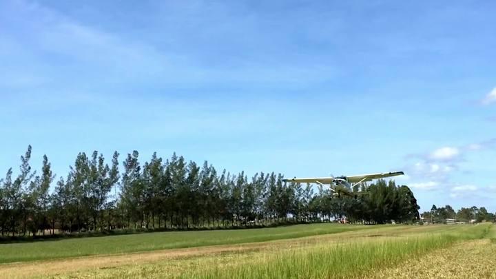 Na Ponta da Língua em: Salto de Paraquedas