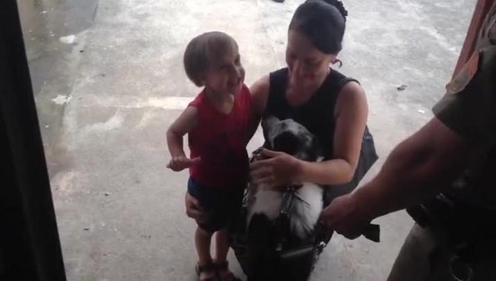 Garoto de três anos é o dono do cachorro salvo por policial militar do calor em Joinvile