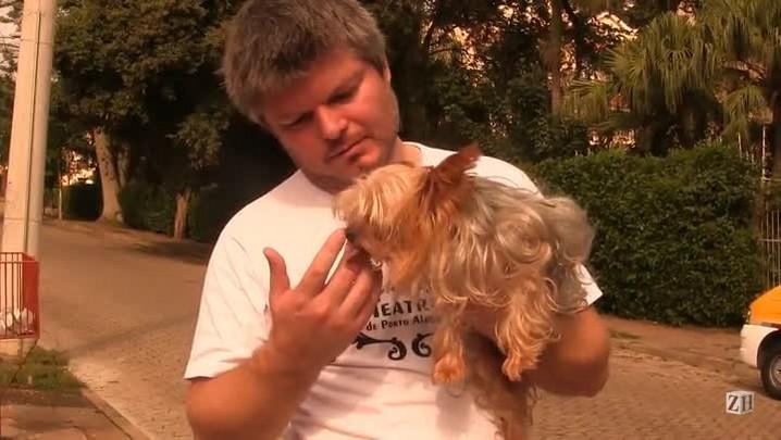 Cachorro encontrado em carro roubado está com dono provisório