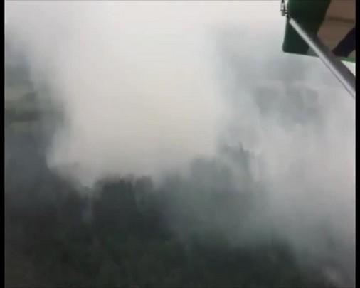 Incêndio em turfas atinge área de cinco mil metros quadrados em Araranguá, no Sul do Estado