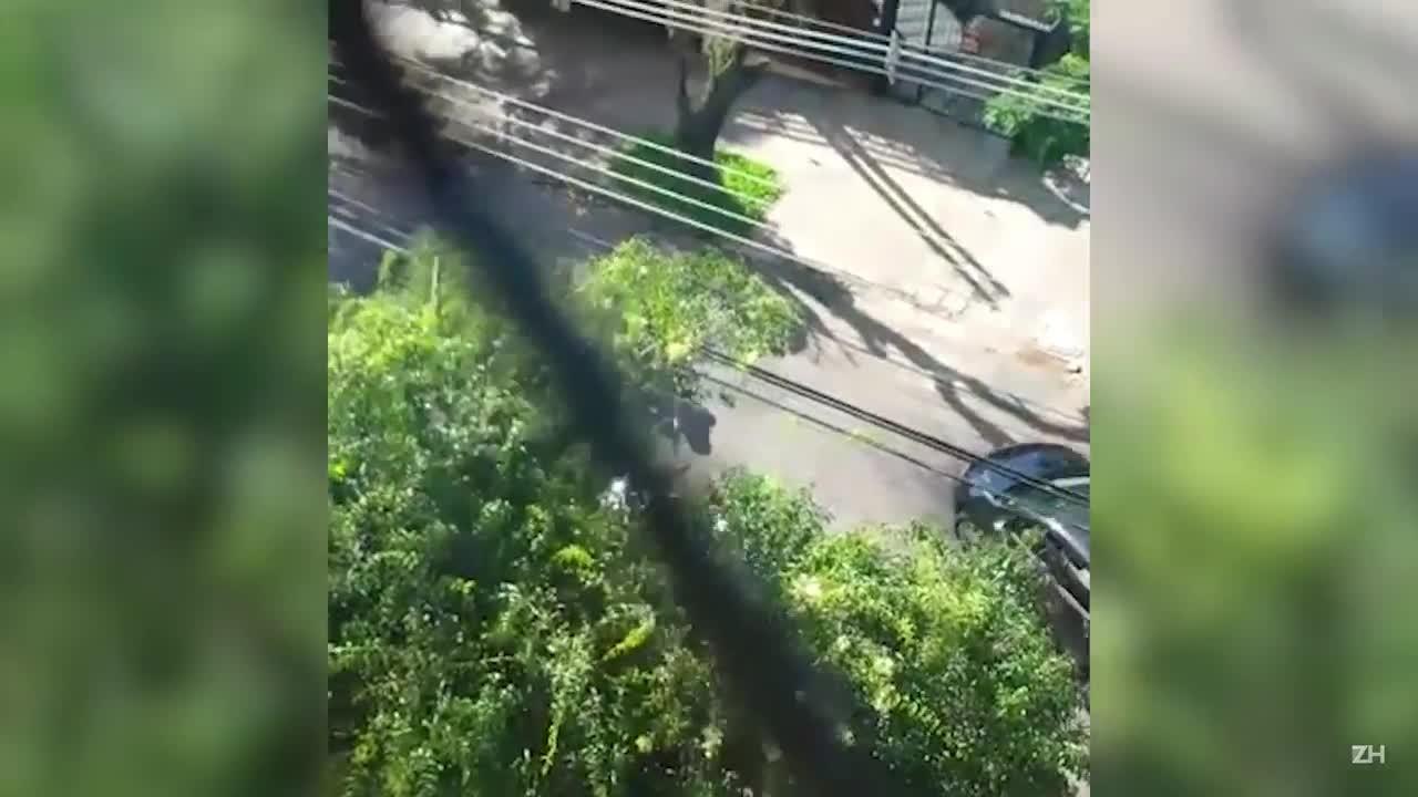 Morador filma assalto no bairro Petrópolis, em Porto Alegre