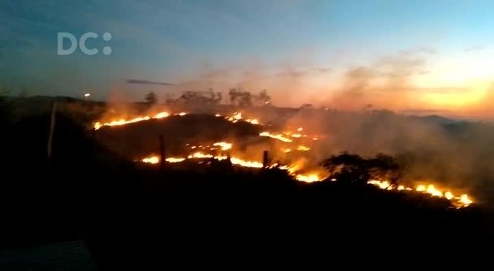 Incêndio atinge região de mata nativa em Imbituba