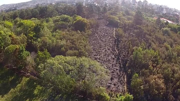 Veja estragos do incêndio no bairro Jardim Botânico, em Porto Alegre