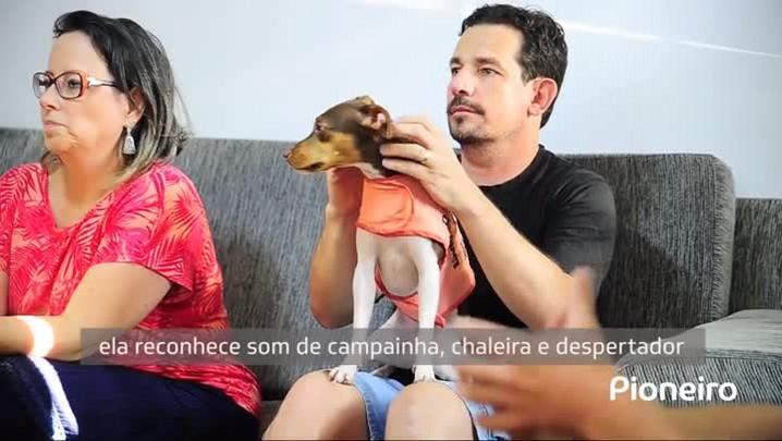 Cão-ouvinte muda a realidade de casal com deficiência auditiva de Caxias do Sul