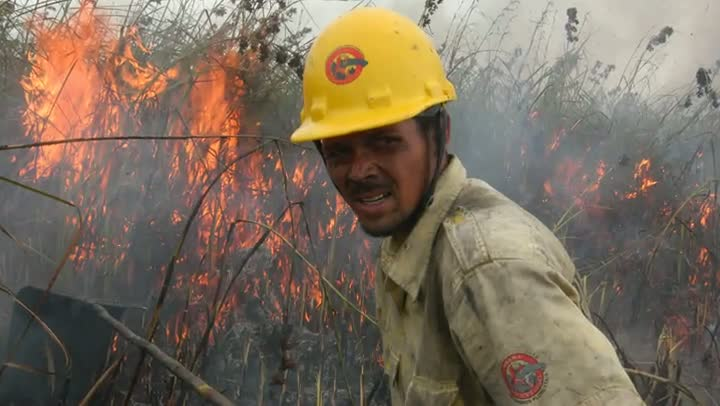 O Taim após o incêndio