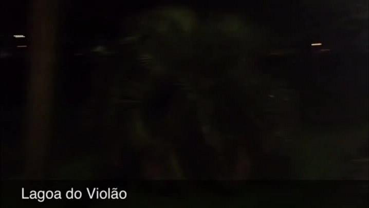 Temporal destelha casas, derruba postes e alaga dezenas de ruas em Torres - 14/02/2014
