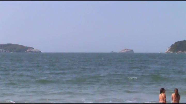 Baleias são avistadas em Florianópolis