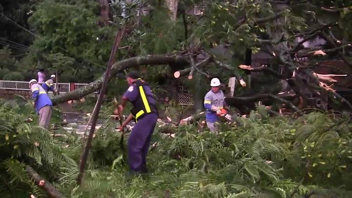 Queda de árvore por temporal provoca incêndio em Porto Alegre