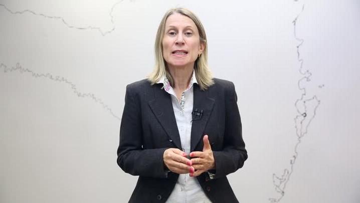 Estela Benetti projeta cenário econômico e desafios do governo Temer