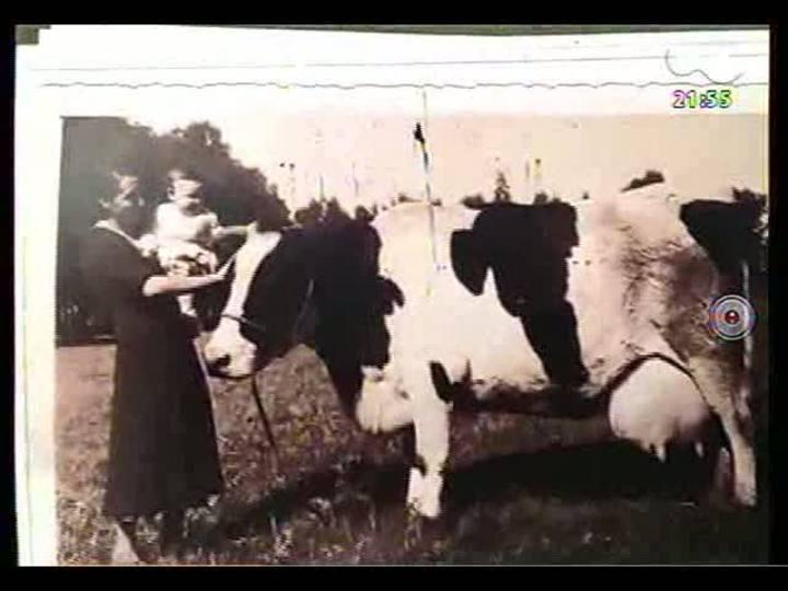TVCOM Tudo Mais - História curiosa: saiba como uma vaca de Charqueadas virou mascote e tema de curta-metragem