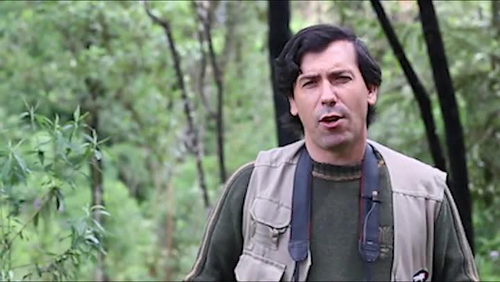 Viva serra - Observador de aves