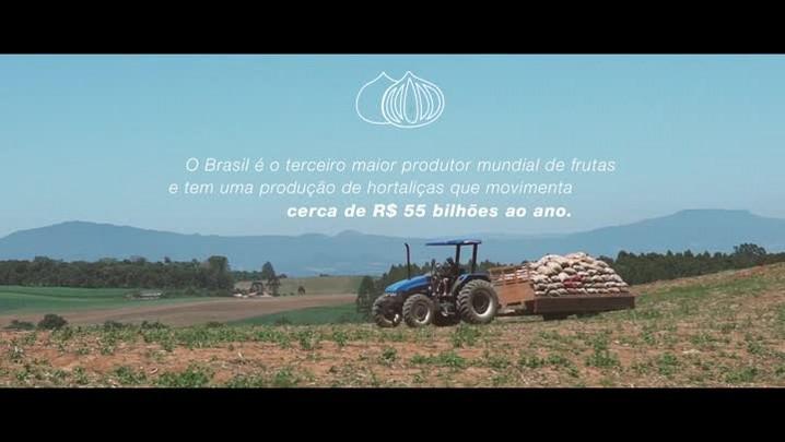 Programa ajuda a potencializar a eficiência do cultivo de frutas e hortaliças