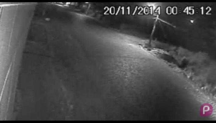 Polícia Civil identifica autor de matança de animais em Bom Jesus através de uma imagem de câmera de segurança